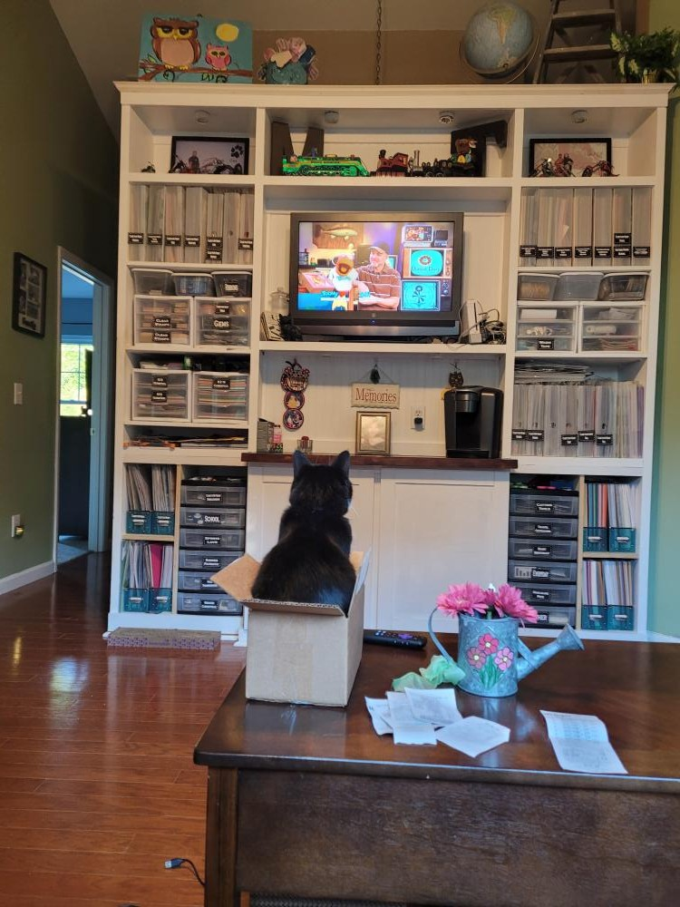 Here is my cat Gidget watching Toon in With Me.   It's how we start our mornings.